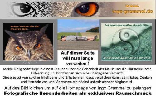 Rewoberlin.de,private Homepage,wolfi
